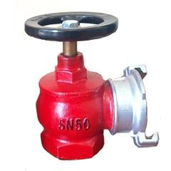 Вентиль пожарный чугунный угловой ДУ-50 в комплекте с гайкой ГМС-50